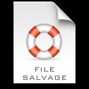 File Salvage